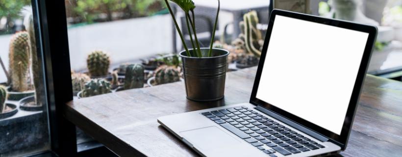 Strona internetowa kancelarii - co powinna zawierać?